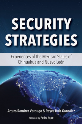 "Cover image for ""Security Strategies"" report"